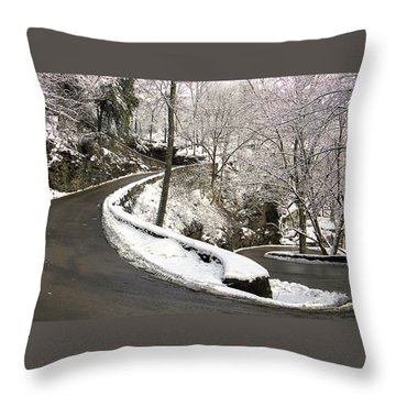 W Road In Winter Throw Pillow