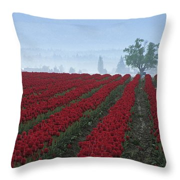 Wa Red Tulips Throw Pillow