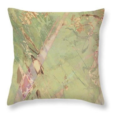 Wabi Sabi Ikebana Revisited Shabby 3 Throw Pillow