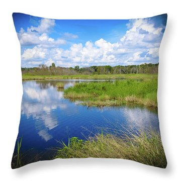 Wading Bird Way Throw Pillow
