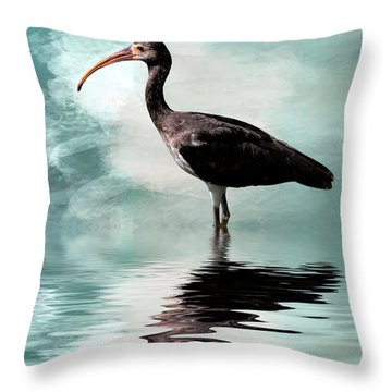 Wading Ibis Throw Pillow by Cyndy Doty