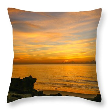 Wading In Golden Waters Throw Pillow