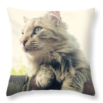 Waffles Throw Pillow by Mary Tron