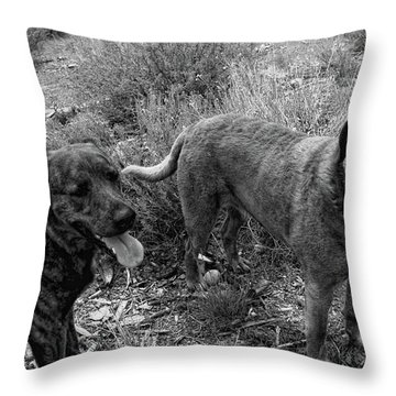 Wagging Tongues Throw Pillow by Donna Blackhall