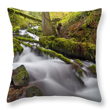 Wahkeena Creek In Green Throw Pillow by David Gn