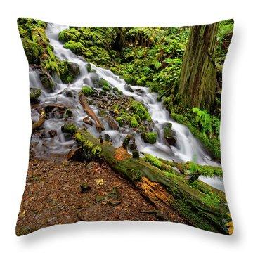 Throw Pillow featuring the photograph Wahkeena Falls by Jonathan Davison