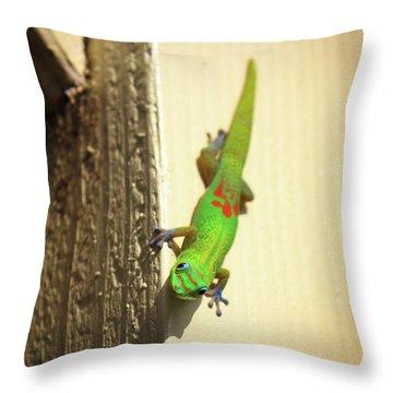 Waimea Gecko Throw Pillow