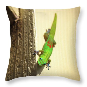 Waimea Gecko Throw Pillow