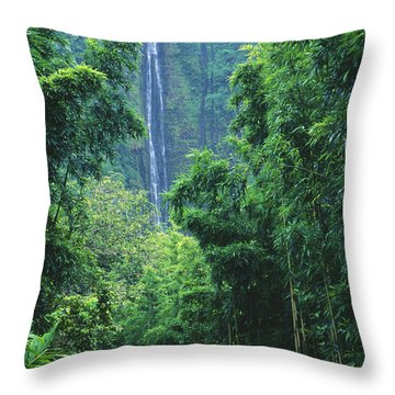 Waimoku Falls Throw Pillow by Dave Fleetham - Printscapes