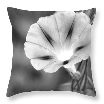 Throw Pillow featuring the photograph Wait For The Sun To Rise In The Morning by Vadim Levin