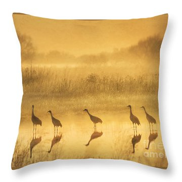 Waiting Throw Pillow by Alice Cahill