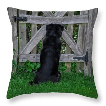 Waiting At The Gate Throw Pillow