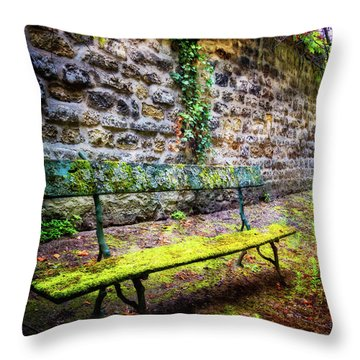 Throw Pillow featuring the photograph Waiting by Debra and Dave Vanderlaan