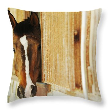Waiting For A Ride Throw Pillow by Jill Reger