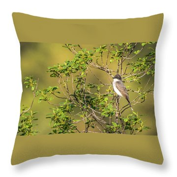 Waiting For A Victim Throw Pillow by Onyonet  Photo Studios
