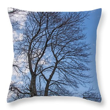 Waiting For Buds Throw Pillow
