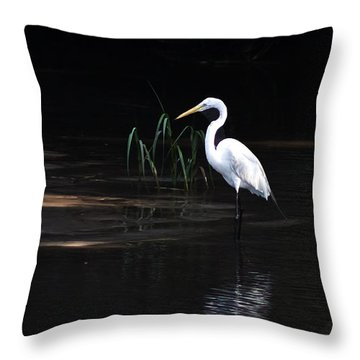 Waiting For Dinner At Low Tide Throw Pillow