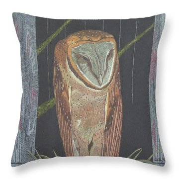 Waiting For Dusk Throw Pillow by Anita Putman