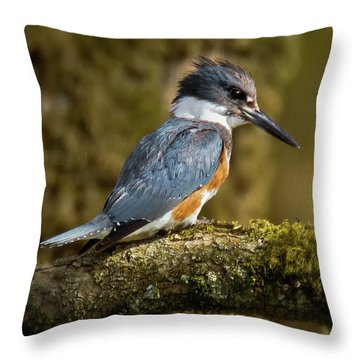 Waiting For Lunch Throw Pillow