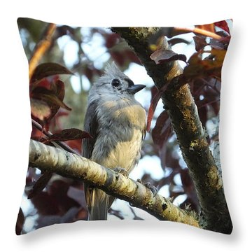 Waiting For Mom Throw Pillow by Judy Wanamaker