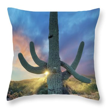 Waiting For Rain Throw Pillow