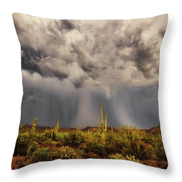 Throw Pillow featuring the photograph Waiting For Rain by Rick Furmanek