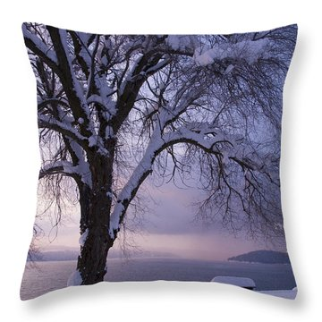 Waiting For Spring Throw Pillow by Idaho Scenic Images Linda Lantzy