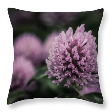 Waiting For Summer Throw Pillow by Miguel Winterpacht