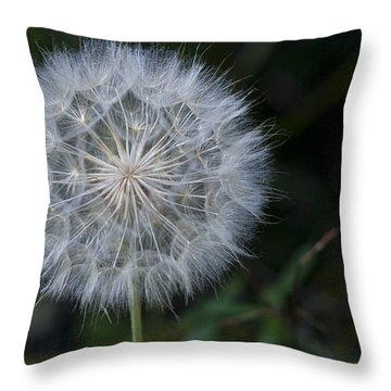 Waiting For The Breeze Throw Pillow