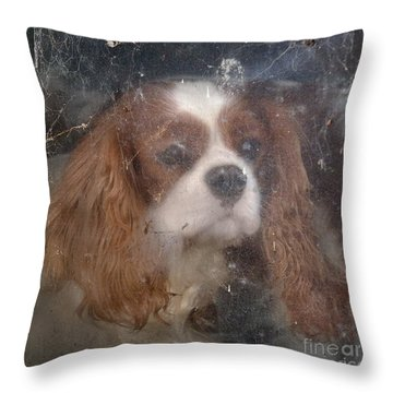 Waiting For The Car To Come Back Throw Pillow