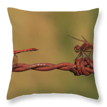 Waiting For The Girls Throw Pillow