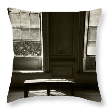 Waiting For The Master Throw Pillow by Ron Jones