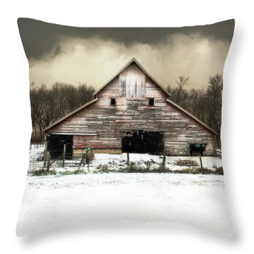Throw Pillow featuring the photograph Waiting For The Storm To Pass by Julie Hamilton