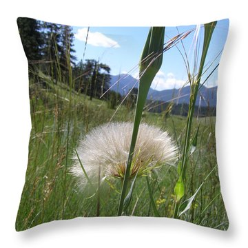 Throw Pillow featuring the photograph Waiting For The Wind by Alan Johnson