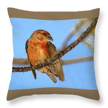 Waiting For Water   Throw Pillow