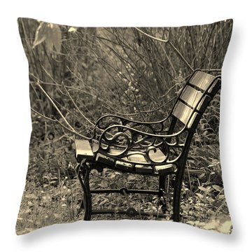 Waiting For You Throw Pillow by Susanne Van Hulst