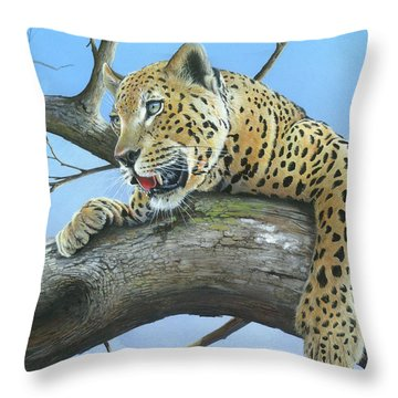 Waiting Game Throw Pillow by Mike Brown