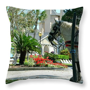 Waiting Horse Throw Pillow by Bruce Gourley