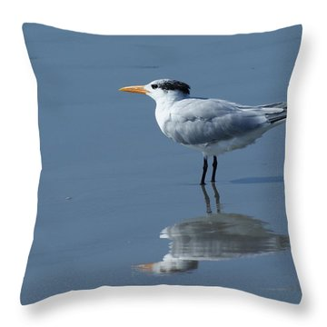 Waiting In The Surf Throw Pillow