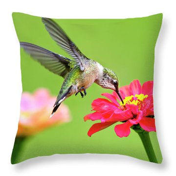 Throw Pillow featuring the photograph Waiting In The Wings by Christina Rollo
