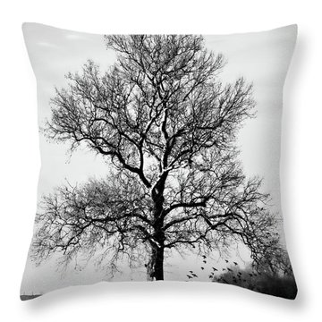 Waiting Throw Pillow by Lana Trussell
