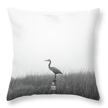 Waiting On The Fog To Clear Throw Pillow