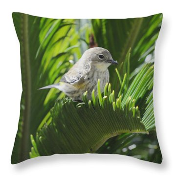 Waiting Or Thinking Throw Pillow by Debby Pueschel