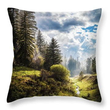 Waiting Out The Rain Throw Pillow