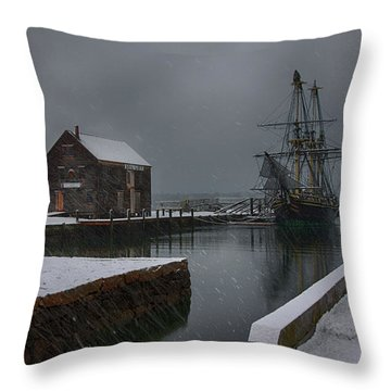 Waiting Quietly Throw Pillow