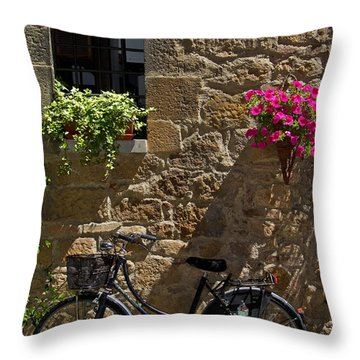 Waiting Throw Pillow by Roger Mullenhour