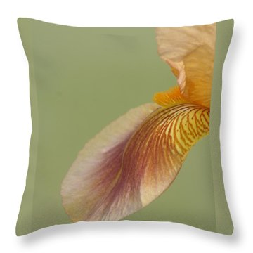Waiting Softly Throw Pillow