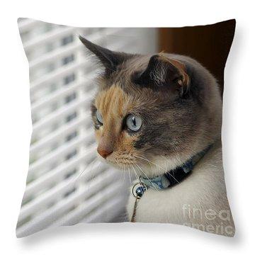 Waiting Throw Pillow by Teresa Zieba