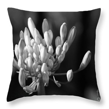 Waiting To Blossom Into Beauty - Bw Throw Pillow