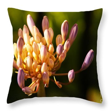 Waiting To Blossom Into Beauty Throw Pillow